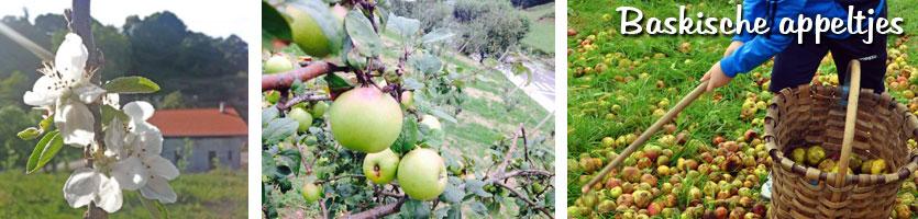 San-Sebastian-cider-appeltjes